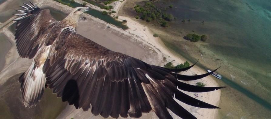 Dronestagram fotópályázat nyertesei